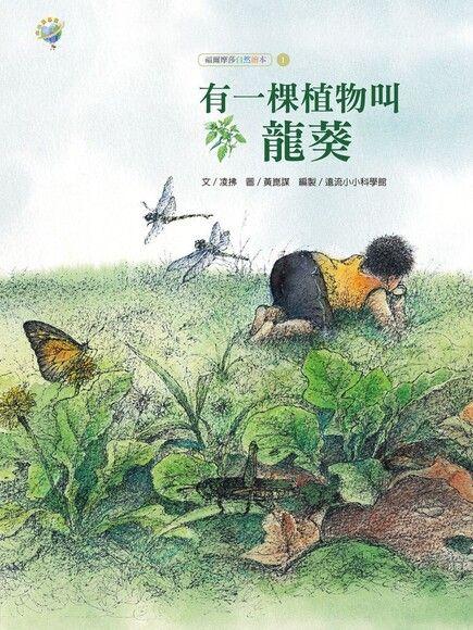有一棵植物叫龍葵