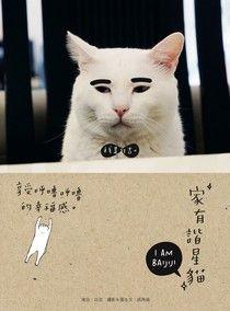 家有諧星貓:享受呼嚕呼嚕的幸福感