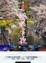 絕美日本*楓花雪夜-芊芊的旅遊攝影手札