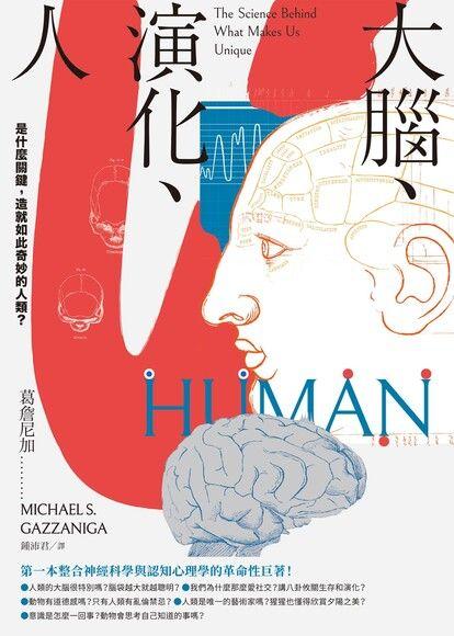 大腦、演化、人
