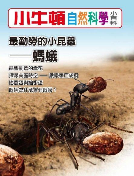 小牛頓自然科學小百科:最勤勞的小昆蟲──螞蟻