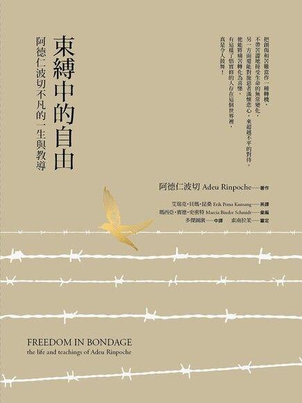 束縛中的自由──阿德仁波切不凡的一生與教導