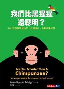 我們比黑猩猩還聰明?