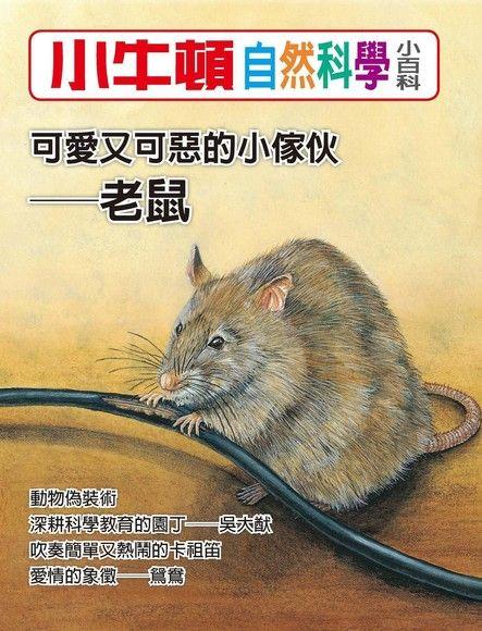 小牛頓自然科學小百科:可愛又可惡的小傢伙──老鼠