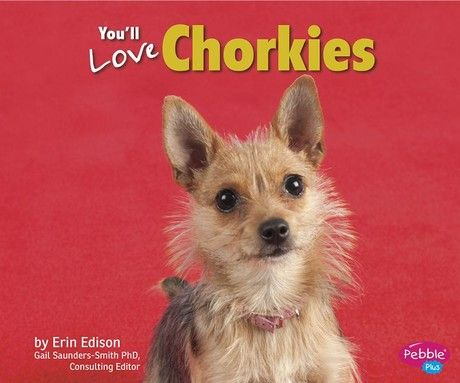 You'll Love Chorkies