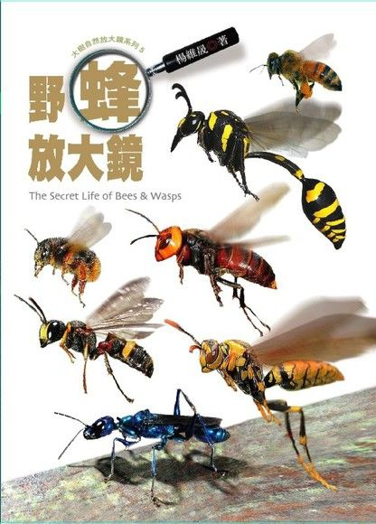 野蜂放大鏡(精裝)
