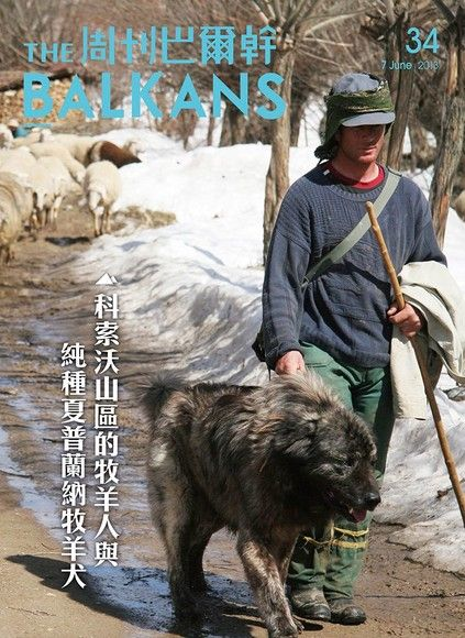周刊巴爾幹No.34:科索沃山區的牧羊人與純種夏普蘭納牧羊犬