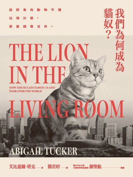 我們為何成為貓奴?這群食肉動物不僅佔領沙發,更要接管世界