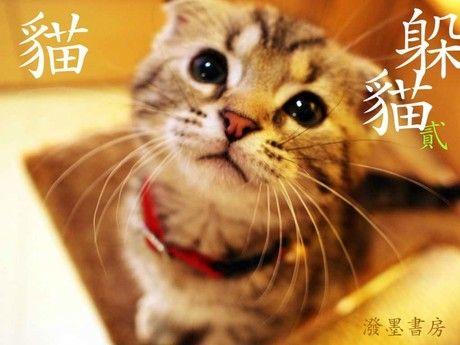 躲貓貓 2