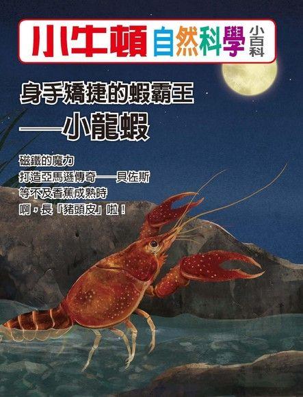 小牛頓自然科學小百科:身手矯捷的蝦霸王──小龍蝦
