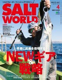 SALT WORLD 2017年4月號 Vol.123【日文版】