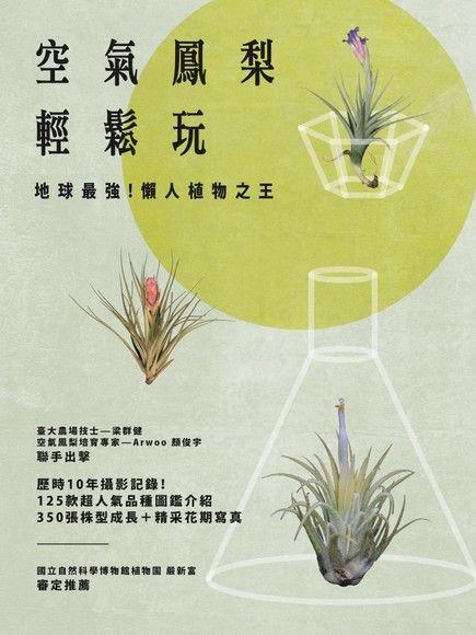 空氣鳳梨輕鬆玩:地球最強!懶人植物之王