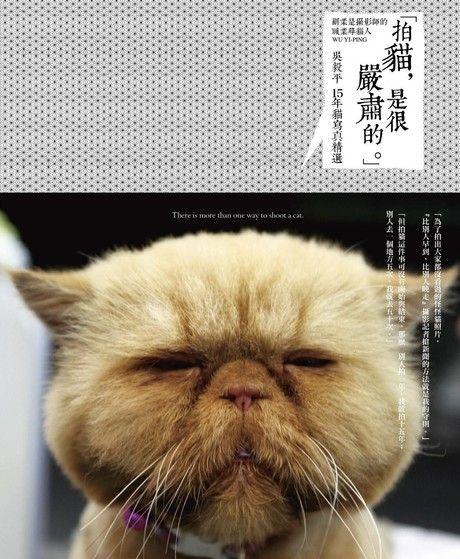 「拍貓,是很嚴肅的。」吳毅平15年貓寫真精選(精裝)