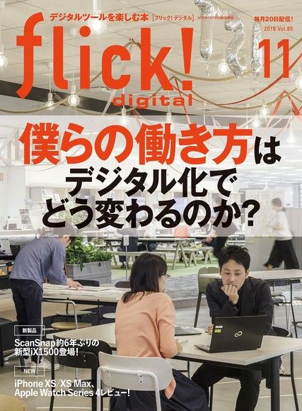 flick! 2018年11月號 Vol.85 【日文版】