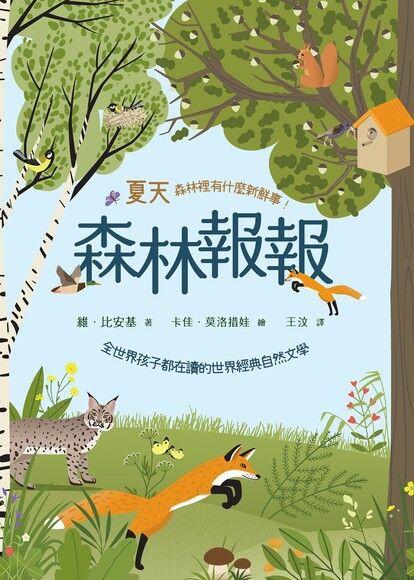 森林報報:夏天,森林裡有什麼新鮮事