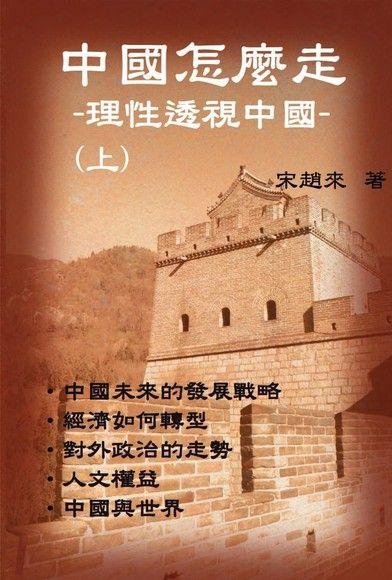 中國怎樣走:理性透視中國(上)