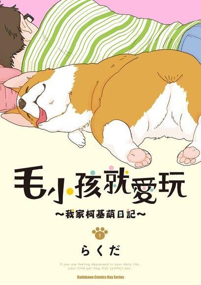 毛小孩就愛玩~我家柯基萌日記~ (1)