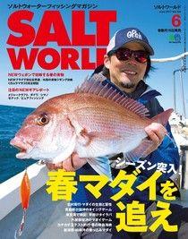 SALT WORLD 2017年6月號 Vol.124 【日文版】