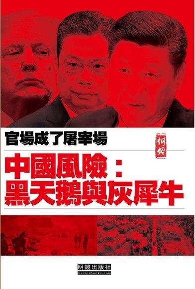 中國風險:黑天鵝與灰犀牛