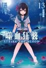 噬血狂襲 (13)(小說)