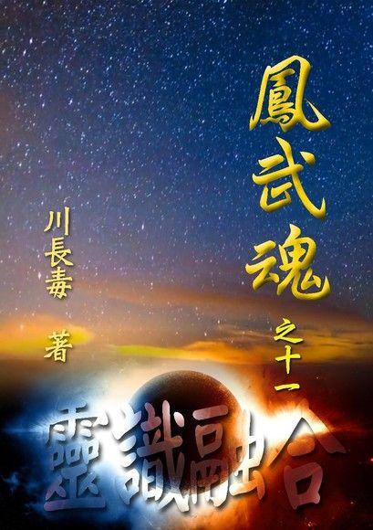 鳳武魂之十一:靈識融合