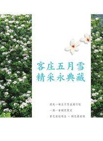 客庄五月雪,精采永典藏-精華版