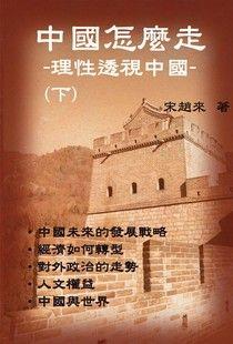 中國怎樣走:理性透視中國(下)