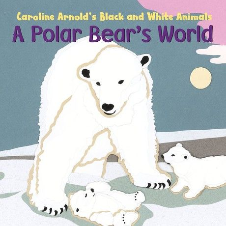 Polar Bear's World