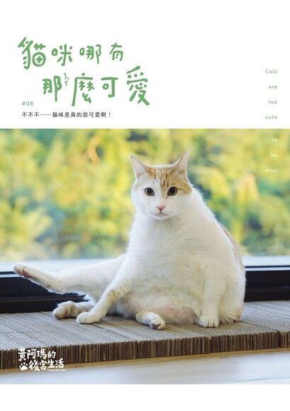 黃阿瑪的後宮生活:貓咪哪有那麼可愛