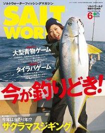SALT WORLD 2019年6月號 Vol.136 【日文版】