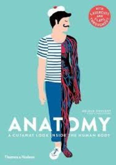 Anatomy:A Cutaway Look Inside the Human Body