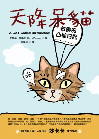 天降呆貓:布魯的凸槌日記(平裝)