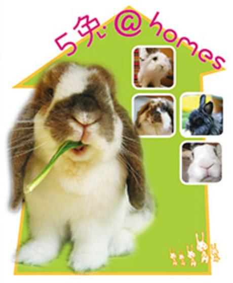 5兔@homes