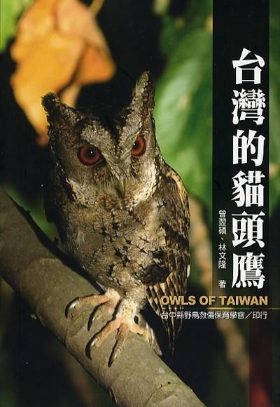 台灣的貓頭鷹