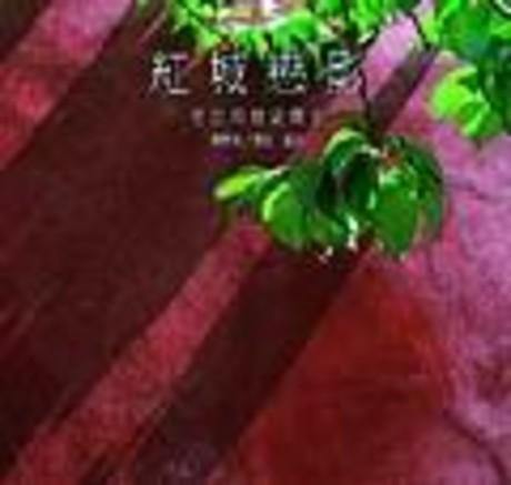 紅城戀影-老台南歷史散步(平裝)