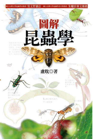 圖解昆蟲學(精裝)