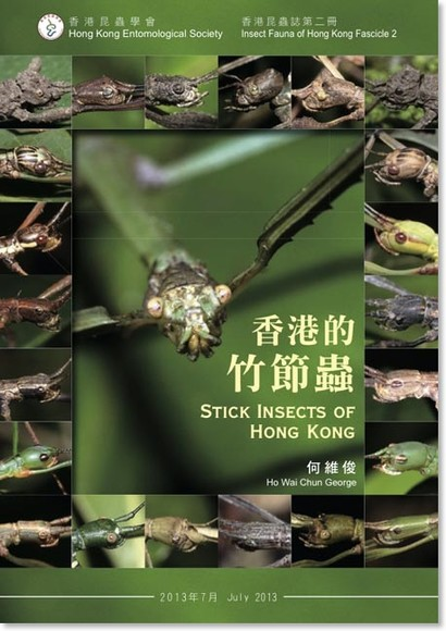 香港的竹節蟲 Stick Insects of Hong Kong