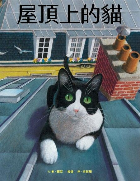 屋頂上的貓(精裝)