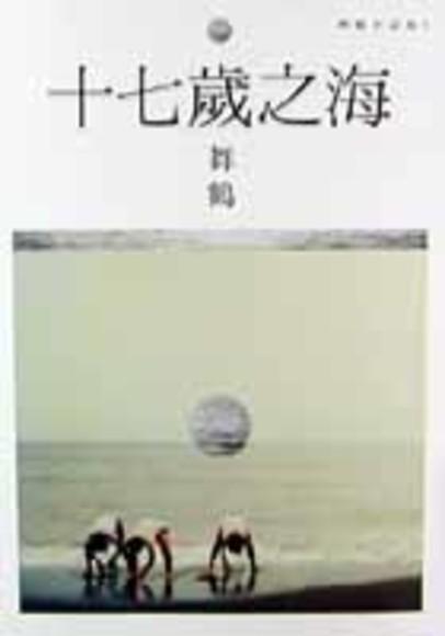 十七歲之海(平裝)