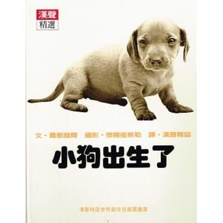 小狗出生了
