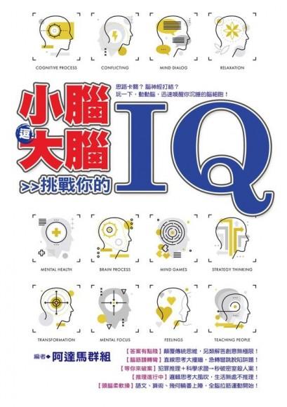 小腦逗大腦: 挑戰你的IQ