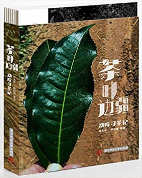 茶叶边疆(勐库寻茶记)