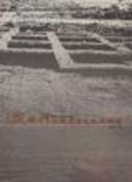 淡水河口的史前文化與族群