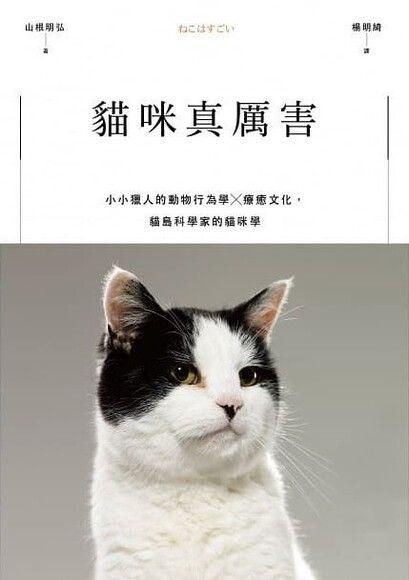 貓咪真厲害