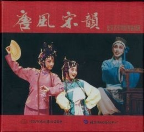 唐風宋韻(DVD)