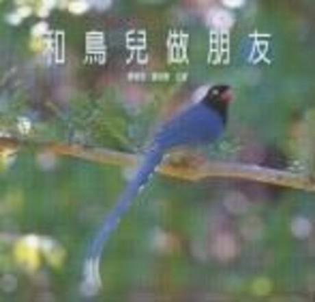 和鳥兒做朋友(平裝)