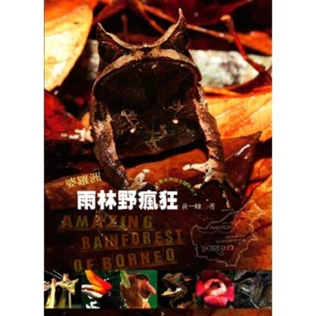婆羅洲雨林野瘋狂(精裝附光碟片)