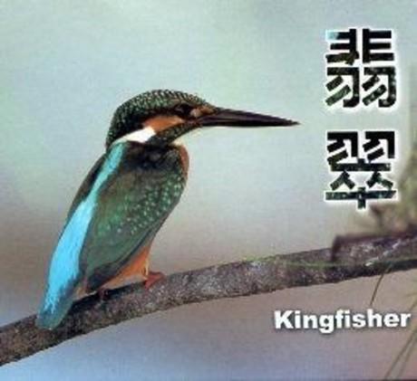 翡翠(DVD)第三屆國家出版獎.入選