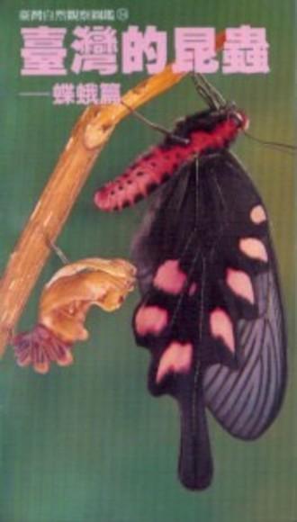 臺灣的昆蟲-蝶蛾篇