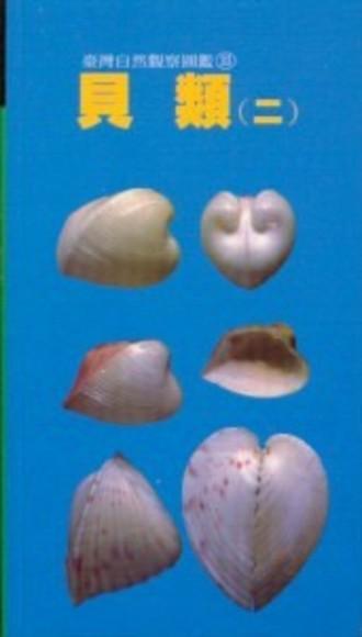 貝類(二)